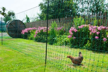 grüner Gartenzaun 50 m x 112 cm Hühnerzaun + 14 Pfähle Hühner-Zaun Geflügelzaun Garten - 5