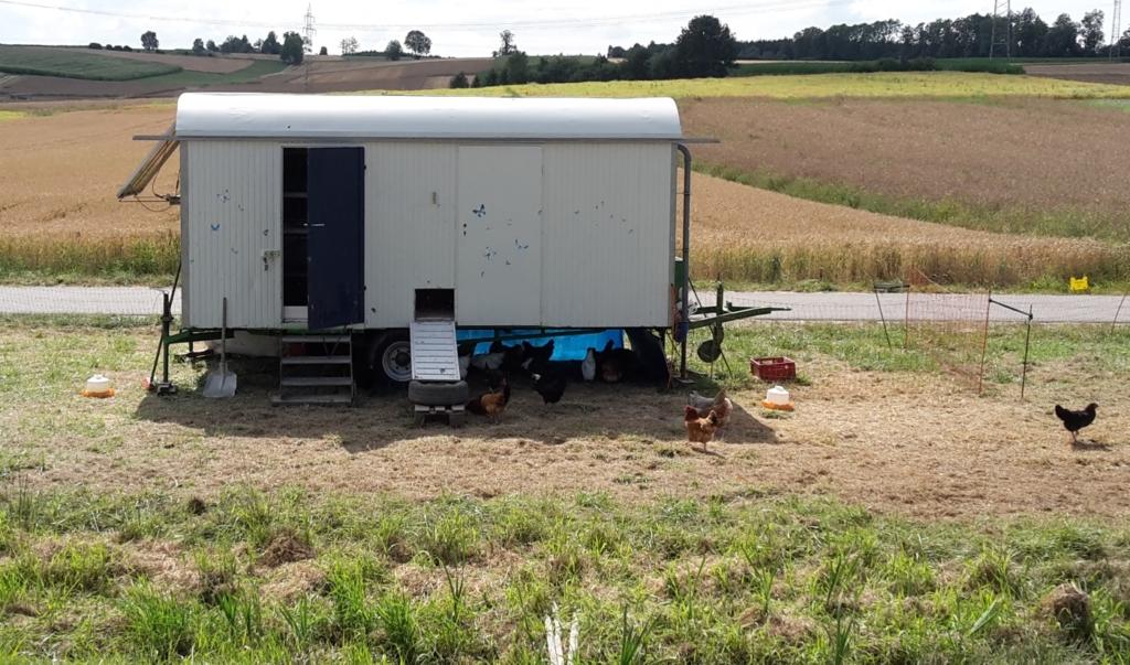 Mobiler Hühnerstall mit Geflügelzaun